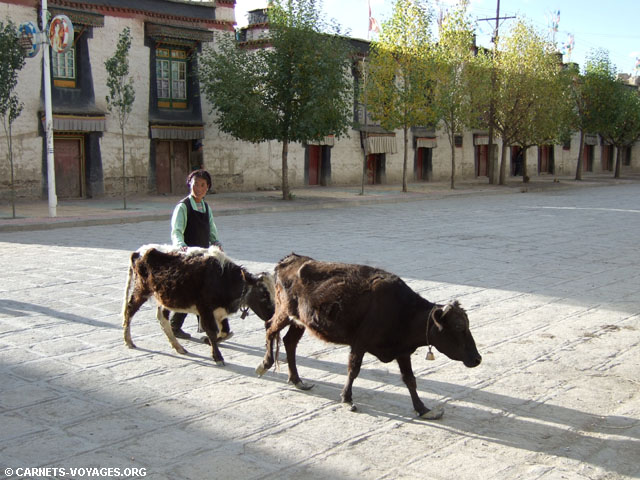 Gyantsé tibet