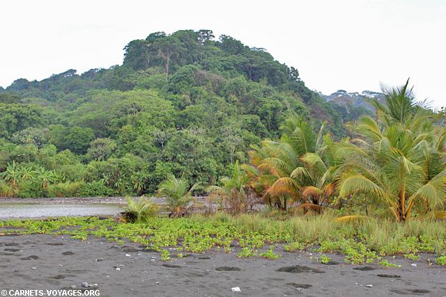 Parc Corcovado Costa Rica