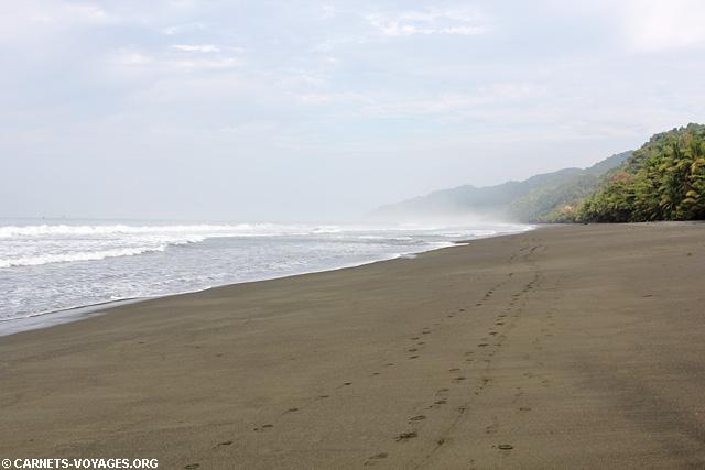 Plage Parc Corcovado Costa Rica