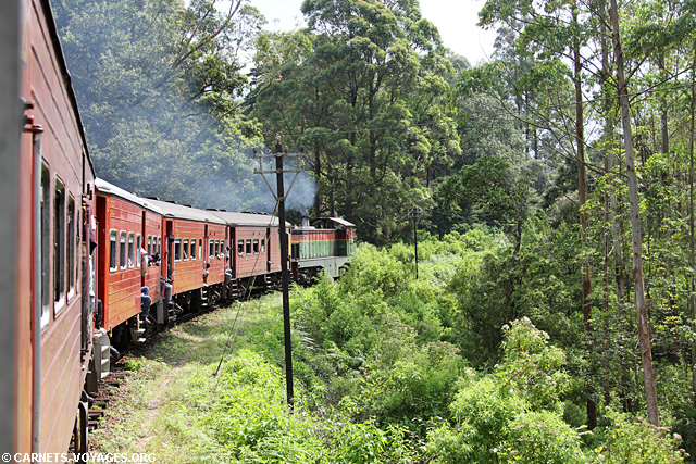 Trajet train Nuwara Eliya Ella Sri Lanka