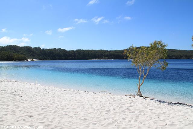 Lac McKenzie road trip Fraser Island Australie