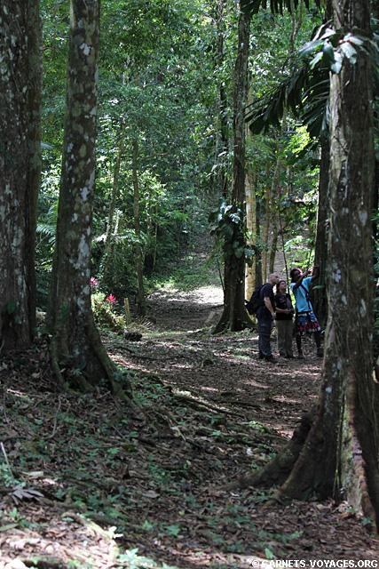Réserve Gandoca-Manzanillo