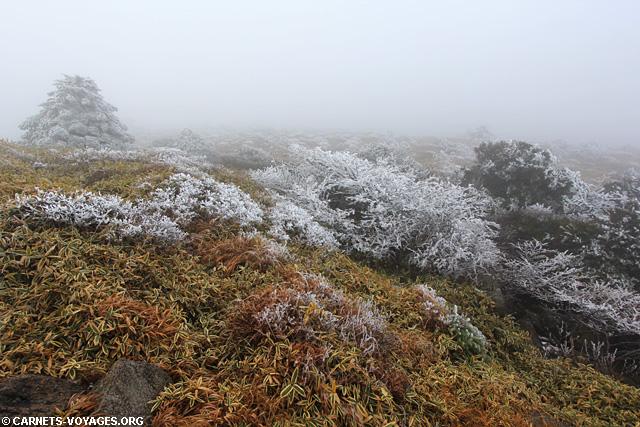 Parc National d'Hallasan Jeju Corée du Sud