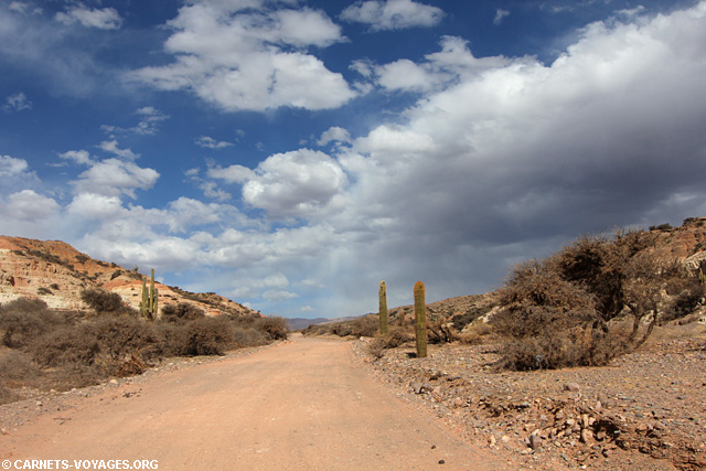 Hornocal road trip nord ouest argentin