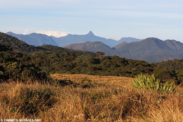 Parc Horton Plains Sri Lanka