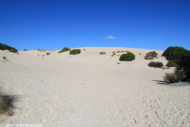 Little Sahara Kangaroo Island Australie
