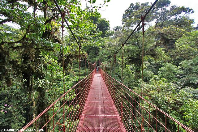 Pont suspendu Réserve Monteverde Costa Rica