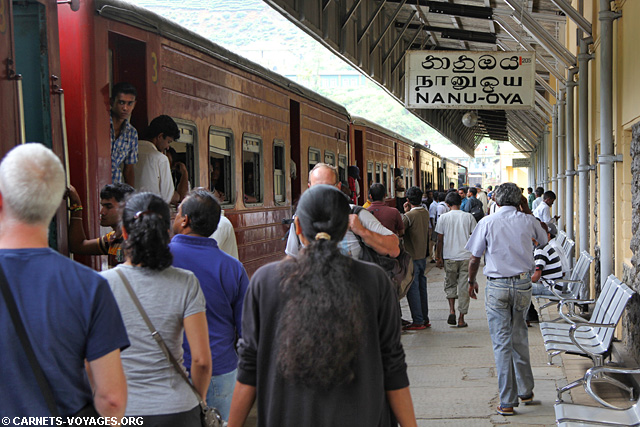 Gare Nanu Oya pour Nuwara Eliya Sri Lanka