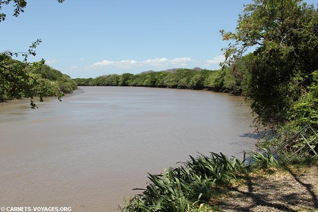 Tour rivière Palo Verde Costa Rica