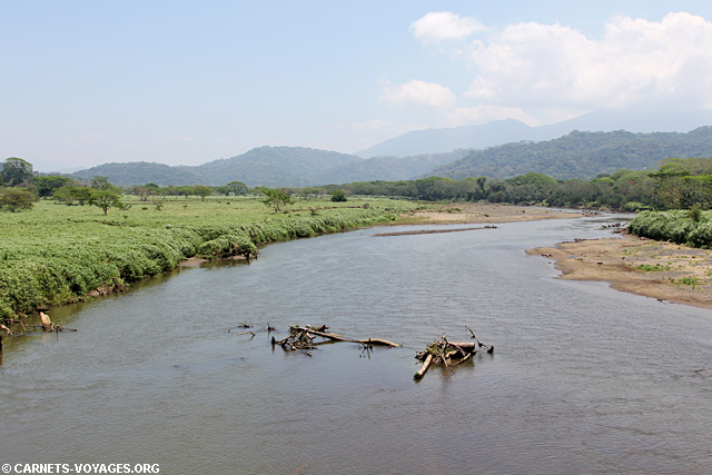Pont crocodiles Rio Tarcoles