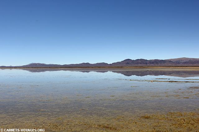 Lagune Los Pozuelos road trip nord ouest argentin