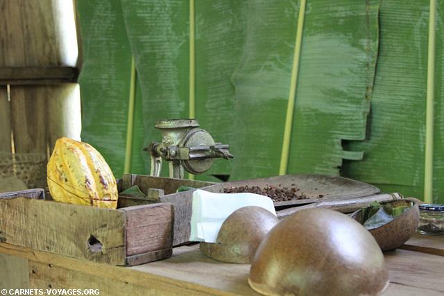 Talamanca Jungle fabrique chocolat Costa Rica