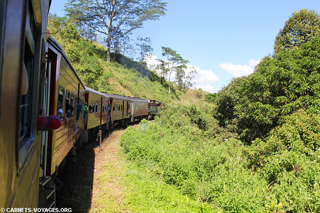 Trajet train Kandy Nuwara Eliya Sri Lanka