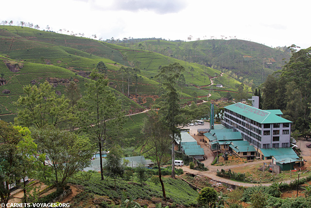 Fabrique thé Labookellie Mackwoods Nuwara Eliya Sri Lanka
