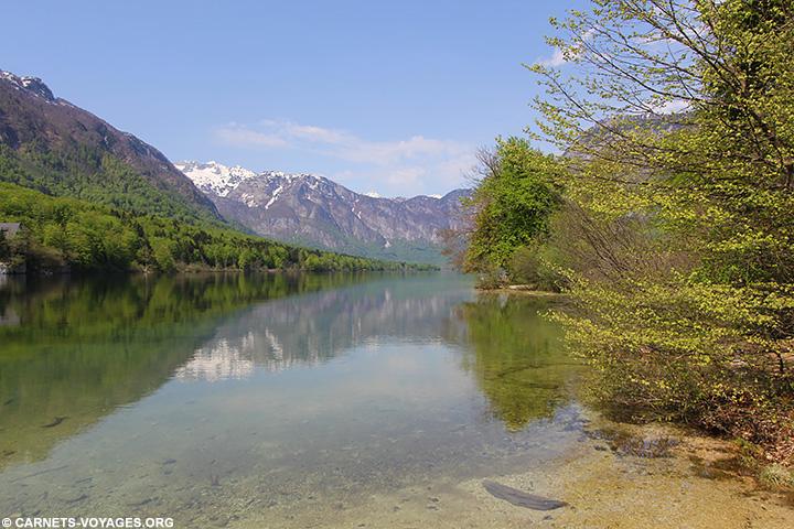 Lac Bohinj Slovénie