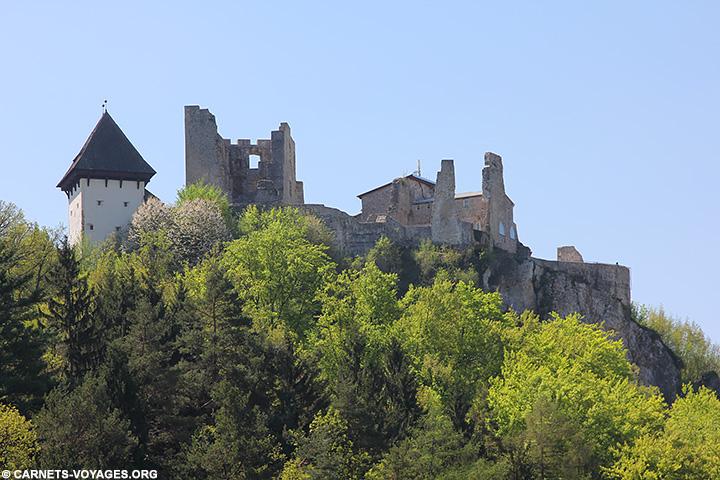 Vieux château de Celje Slovénie