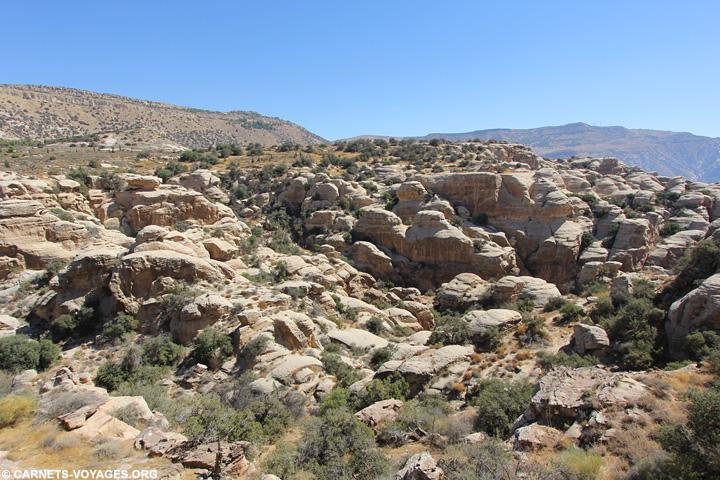 Randonnée réserve Dana Jordanie