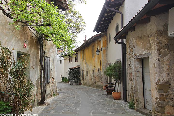 Visiter village Smartno Slovénie