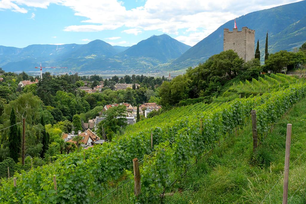 Promenade Tappeiner Weg à Merano Italie