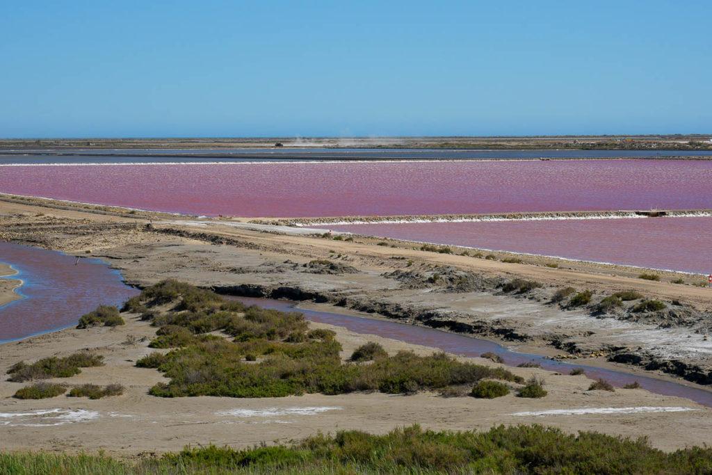 Point de vue du sel salin de giraud marais salants roses