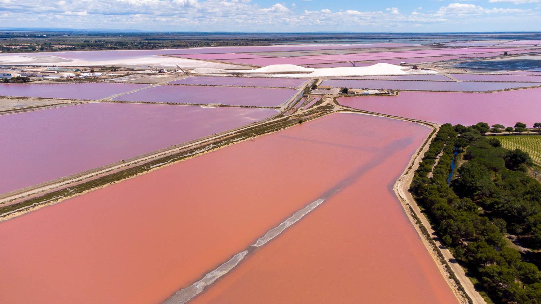 Salin aigues mortes camargue salin du midi rose sel