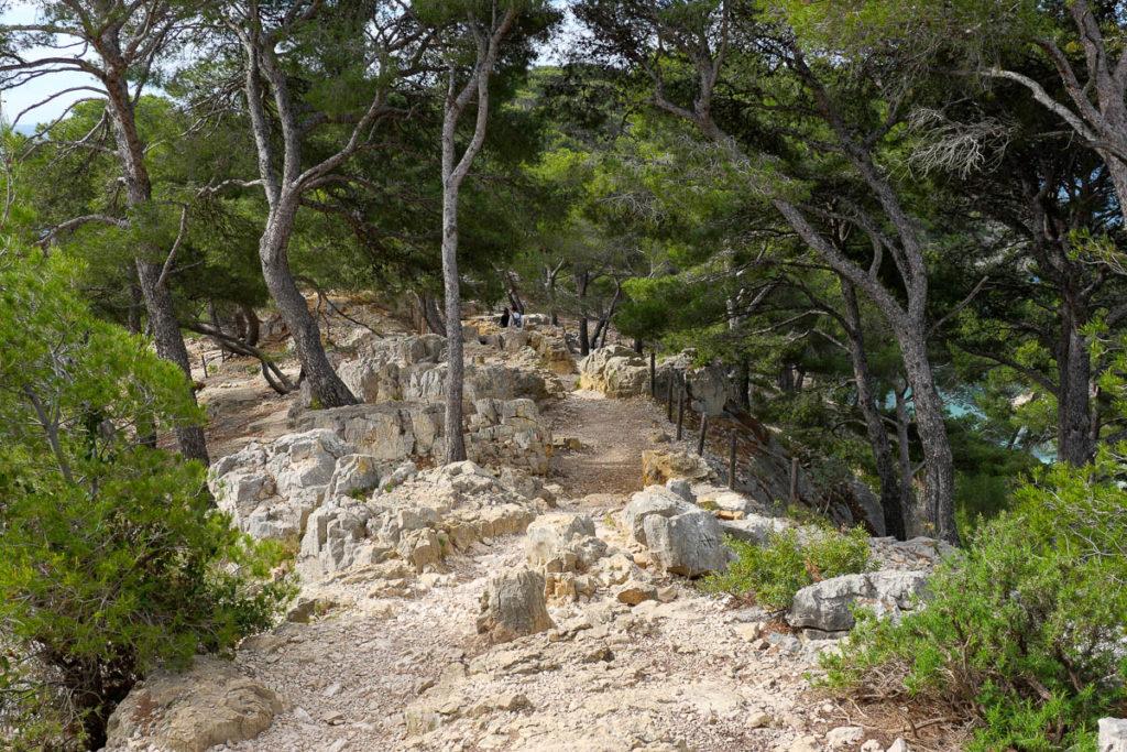 Sentier randonnée calanque port pin marseille cassis