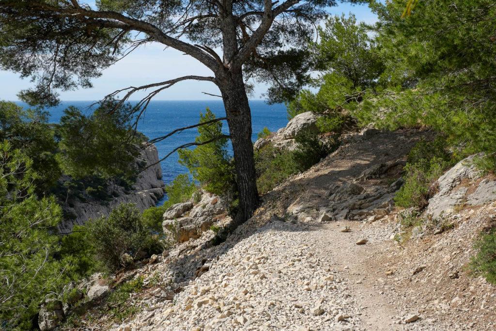 Sentier randonnée calanque d'en-vau marseille cassis
