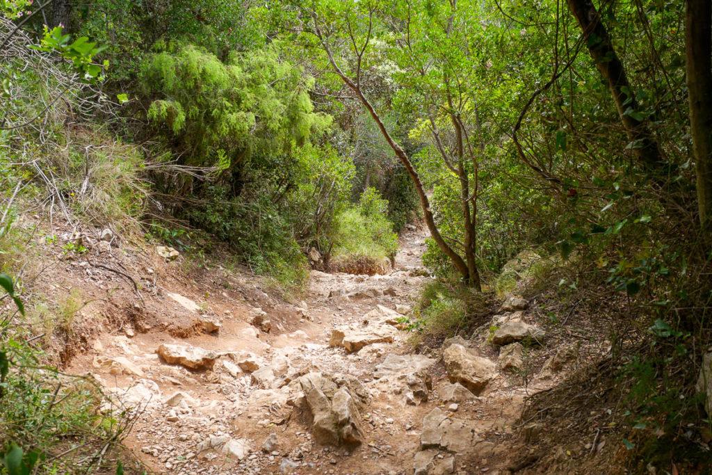 Sentier randonnée calanque d'en-vau par la piste intérieure marseille cassis