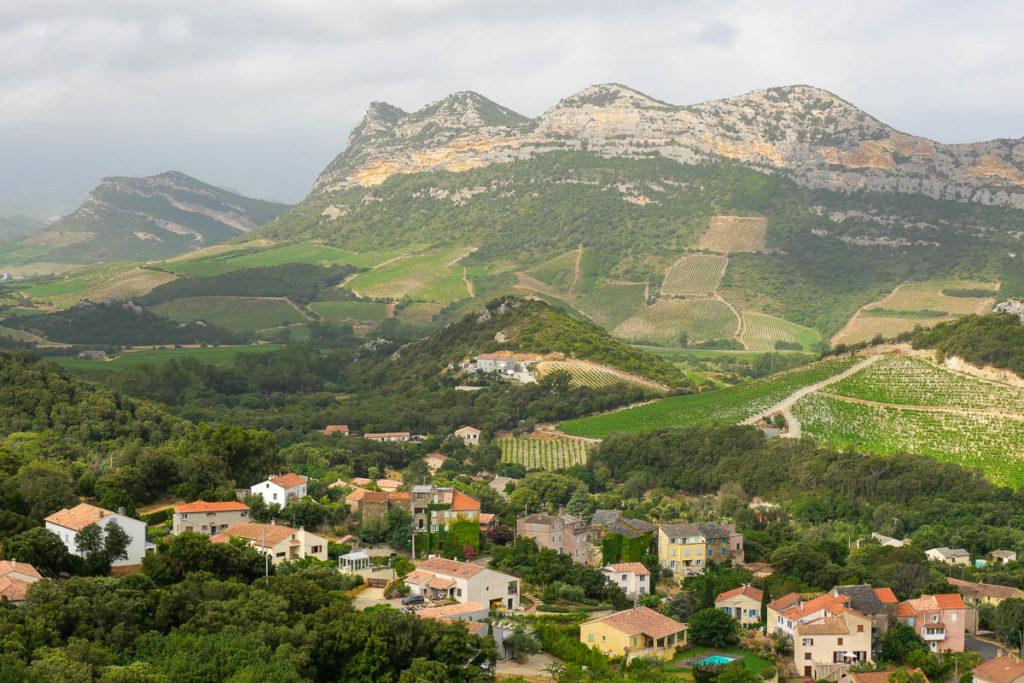 Vignobles Patrimonio Corse