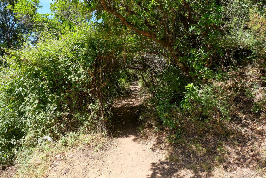 Point de départ sentier randonnée vers les cascades de Purcaraccia en Corse