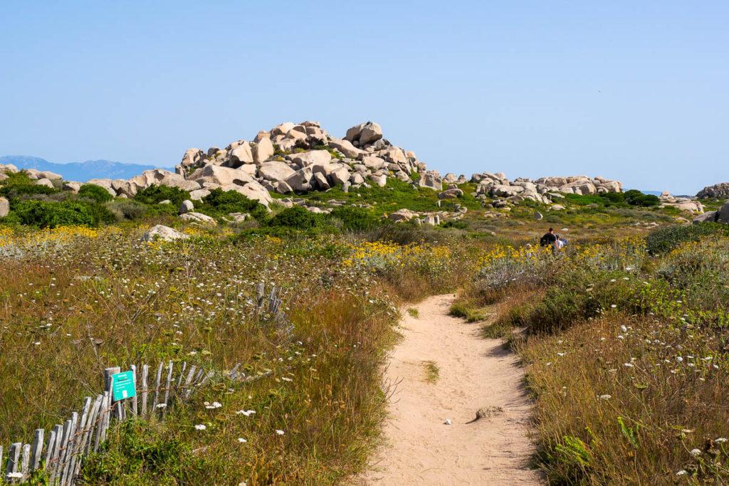 Sentier ile Lavezzu archipel Lavezzi Corse